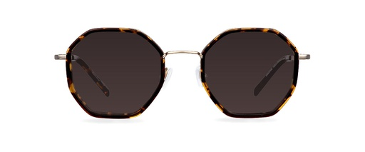 gzp_BRIGHTON GOLD DH/DARK HAVANA